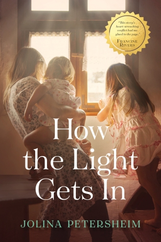 how the light gets in hires